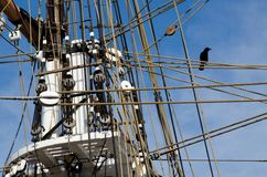 Tall ship. A tall ship against a blue sky with clouds and a bird sitting on a rope in Dana Point,CA Stock Image