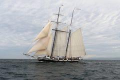 Free Tall Ship -8124 Stock Photo - 15731690
