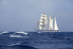 Tall Ship In The Sea Royalty Free Stock Photography