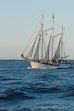 Tall Ship. Polish tallship schooner Zawisza Czarny from Gdynia on her way from Saint Petersburg, Russia to Tallinn, Estonia Royalty Free Stock Photos