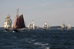 Tall ship race Royalty Free Stock Photo