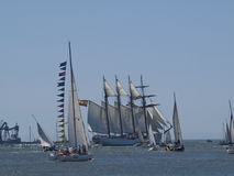 Tall Ship regata in Tagus river Stock Image