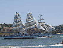 Tall Ship regata in Tagus river Stock Photos