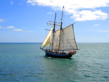 Tall Ship sailing in New Zealand. Tall Ship (R.Tucker Thompson) sailing through the Bay of Islands, New Zealand Royalty Free Stock Photos