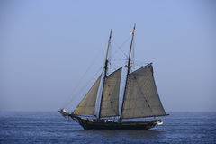 Tall ship. Sails in Southern California during a  event Royalty Free Stock Photos