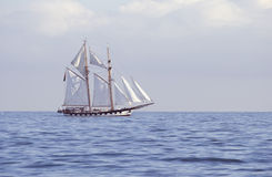 Tall ship in the sea Royalty Free Stock Photo