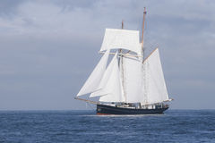 Tall ship in the sea stock photography