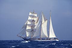 Tall ship in the sea Stock Image