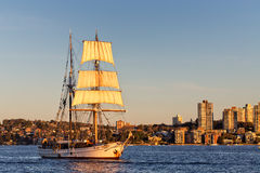 Tall ship Soren Larsen. SYDNEY,AUSTRALIA - JULY 27,2014: Tall ship Soren Larsen brings its daytrippers back to the harbour Stock Images