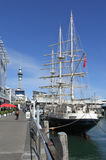 The tall ship Spirit of New Zealand royalty free stock photo
