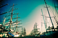 Tall ships in port. Tall ships parade in Klaipeda port during 2009 races old film look Royalty Free Stock Photo
