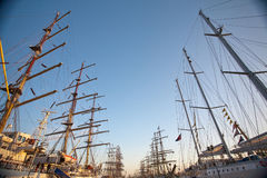 Tall ships in port. Tall ships parade in Klaipeda port during 2009 races early morning cloudless sky Royalty Free Stock Photo