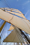 Tall ships rigg. The rigging of a squaresailer seen from deck. Swedish tall ship, the brig Tre kronor af Stockholm underway during trial sails 2007 Royalty Free Stock Photo
