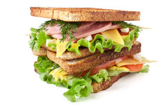 Tall toasted sandwich Stock Photography