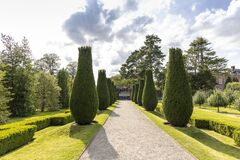 Tall topiary trees and low border of clipped box in a park.