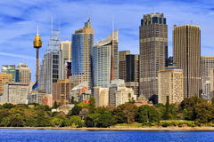 Tall towers of high-rise office buildings in Sydney. City CBD standing above the Royal Botanic Gardens as seen from Sydney Harbour on a sunny day Stock Image