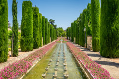 Tall trees and fountain in The jardines, royal garden of the Alc Royalty Free Stock Photo