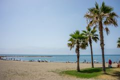 Tall twin palm trees along the Malagueta beach with ocean in the Royalty Free Stock Photo