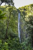 Tall Waimoku Falls on Maui island, Hawaii. Tall Waimoko Falls on Maui island on Hawaii royalty free stock photography