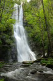 Tall waterfall in forest. Scenic view of tall waterfall in forest, Fonsagrada, Lugo, Spain Royalty Free Stock Images