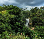 Tall waterfall in tropical forest. Beautiful exotic nature with fresh water stream. Stock Images
