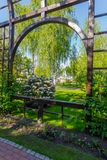 A tall wooden arch with rose bushes against the background of a flowering bush. For your design Royalty Free Stock Image