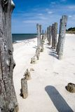 Tall wooden jetty. Stock Photos