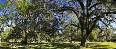 The Tallahassee Old City Cemetery is the oldest burial ground in the city, Tallagasse. Tallahassee, FL, USA - October 24, 2017: The Tallahassee Old City Cemetery stock image