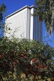 Tallahassee, Florida - condizione Campidoglio Immagini Stock