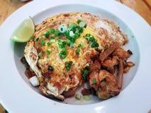 Tallarines de arroz frito con el pollo Foto de archivo