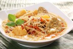 Tallarines picantes asiáticos del curry del coco Imágenes de archivo libres de regalías