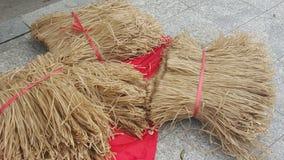 Tallarines secados chinos Imagen de archivo