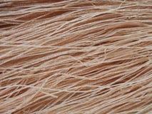 Tallarines secados del arroz moreno imagen de archivo