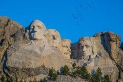 Tallas de los presidentes con los pájaros de arriba en el monte Rushmore foto de archivo