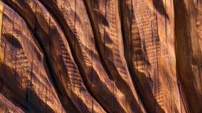 Tallas de madera de la textura del fondo imagen de archivo libre de regalías