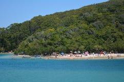 Tallebudgera小河英属黄金海岸昆士兰澳大利亚 免版税库存照片
