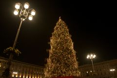 The tallest Christmas tree. The biggest Christmas tree in Dom Place in Milan Italy. Decoreted with hundreds of lights and decoration stock image