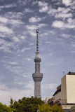 Tallest tower in Tokyo Royalty Free Stock Image
