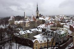 Tallin Στοκ εικόνες με δικαίωμα ελεύθερης χρήσης