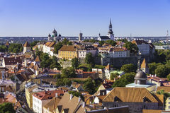 Tallin bird's eye. Old Tallin inside fortress walls seen from bird's eye. Estonia Stock Image