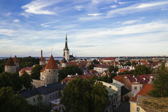 Tallin city view Stock Images