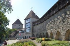 TALLIN, ESTLAND 24 AUGUSTUS 2015 - Toeristenmening van Oude Stadsarchitectuur in Tallinn, Estland Royalty-vrije Stock Foto's