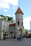 TALLIN, ESTLAND 24 AUGUSTUS 2015 - Toeristenmening van Oude Stadsarchitectuur in Tallinn, Estland Stock Afbeelding