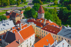 Tallin Royalty Free Stock Images