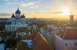 Tallin miasta stary widok z lotu ptaka Obraz Stock