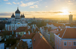 Tallin old city aerial view Stock Image
