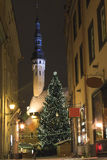 Tallin Old town in Christmas at night. Christmas is celebrated across Tallinn's Old Town. The Christmas tree stands beside the Town Hall, an example of Gothic Stock Images