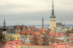 Tallin Old Town Red Roof Cityscape Royalty Free Stock Photos