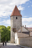 Tallin tower and wall Royalty Free Stock Photos