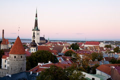 Tallin view. A Tallin view wuth cuty wall and towers and city hall and sea Royalty Free Stock Images